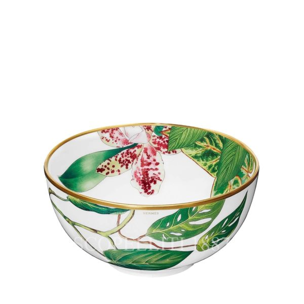 hermes passifolia new collection porcelain bowl