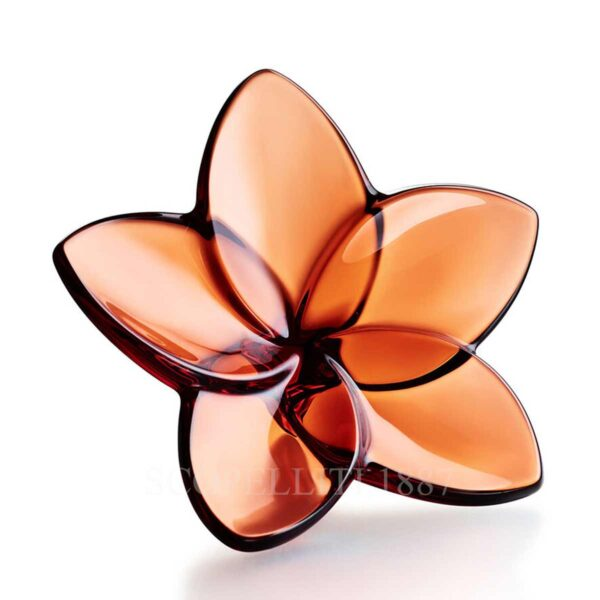baccarat the bloom collection mahogany