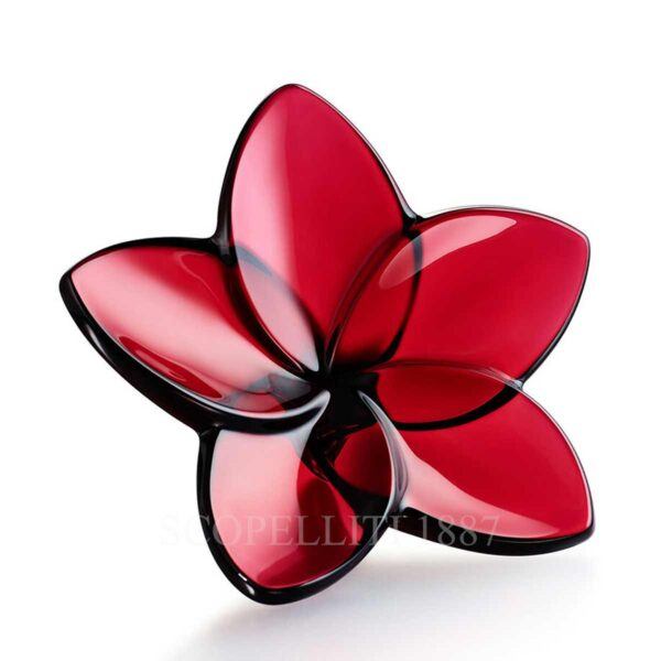 baccarat the bloom collection red