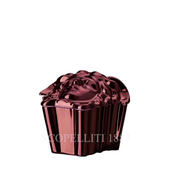 versace box gypsy fuchsia