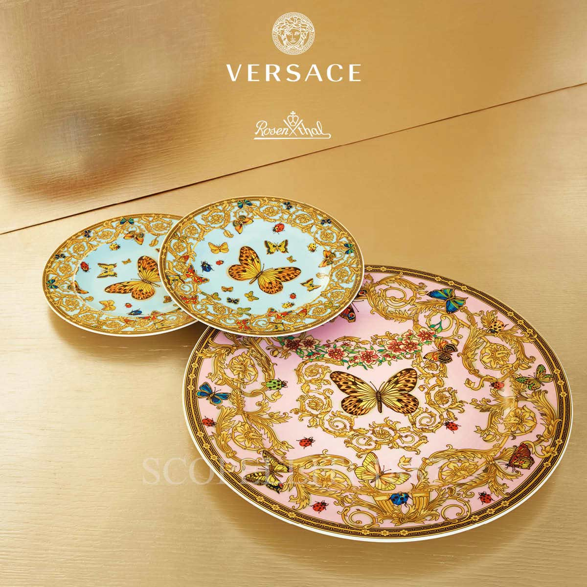 versace butterfly plates